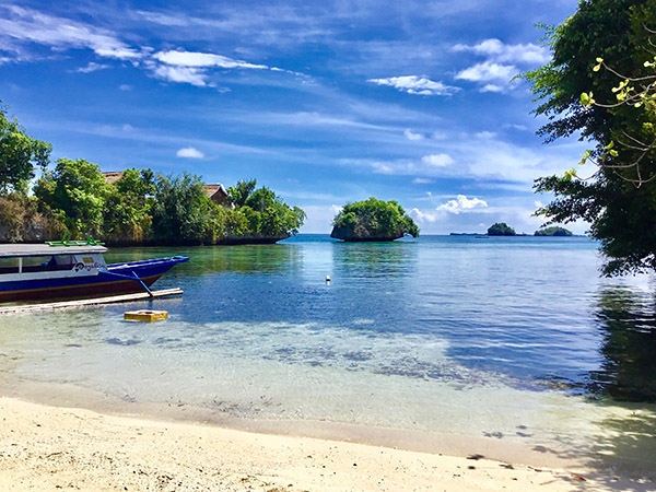 togean sulawesi