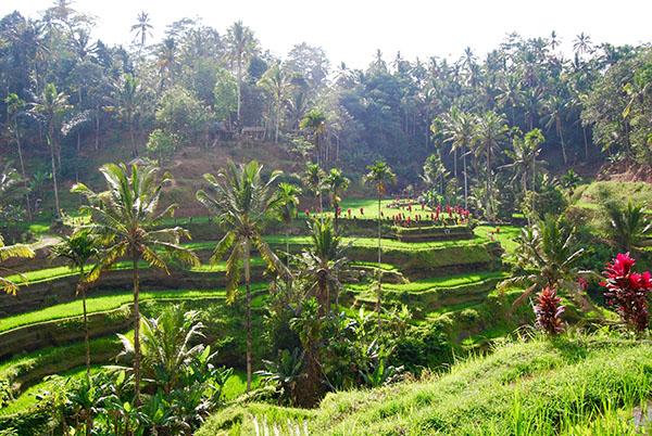 Parco Kelimutu Flores