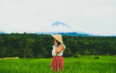 Cosa fare a Bali: esperienze, attività ed escursioni